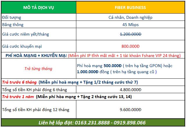 fiber-business
